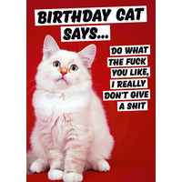 Birthday Cat Says Rude Birthday Card