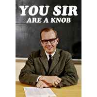 You Sir are a Knob Funny Fridge Magnet