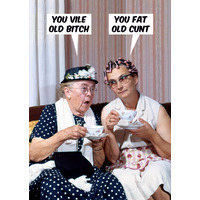 You Vile Old Bitch Rude Birthday Card