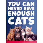 You Can Never Have Enough Cats Funny Birthday Card